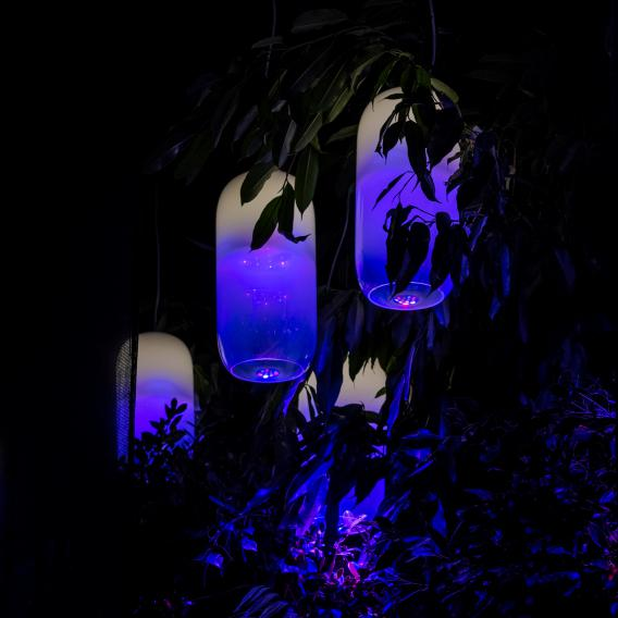 Artemide Gople LED RWB Pendelleuchte