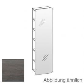 Artiqua 400 Spiegelregal Front verspiegelt / Korpus graphit struktur