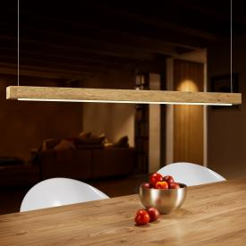 BANKAMP PURE ELEMENTS LED Pendelleuchte mit Dimmer