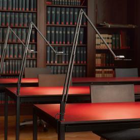 belux lifto LED Tischleuchte mit Tischzwinge, Dimmer und veränderbarer Lichtfarbe