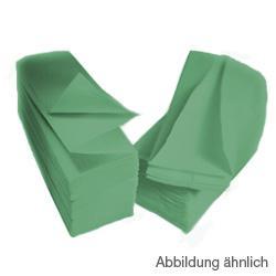 CWS ParadiseLine Faltpapier für Papiertuchspender Karton a 3552 (24x148) Blatt, grün