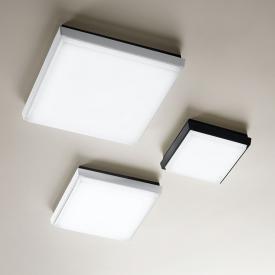 Fabas Luce Desdy LED Decken-/Wandleuchte