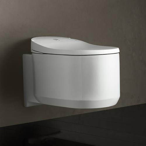 Grohe Sensia Arena Dusch-WC Komplettanlage für Unterputzspülkästen, Wandmontage