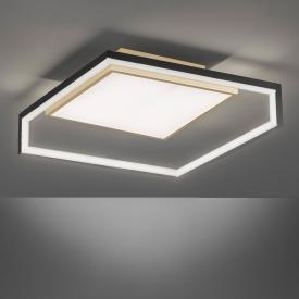 Fischer & Honsel Nala LED Deckenleuchte
