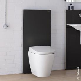 Geberit Monolith Plus Sanitärmodul für Stand-WC, H: 114 cm Glas schwarz