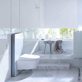Geberit Monolith Plus Sanitärmodul für Wand-WC H: 101 cm Glas weiß