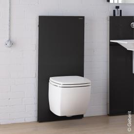 Geberit Monolith Sanitärmodul für Wand-WC, H: 114 cm Glas schwarz