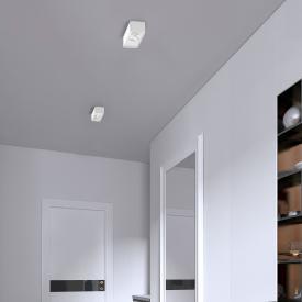 helestra CAS LED Deckenleuchte/Spot, 2-flammig