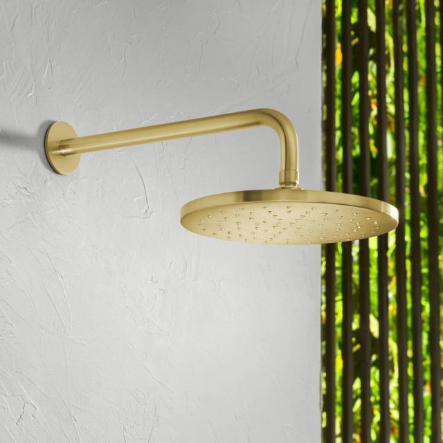 Herzbach Design iX PVD Regenbrause brass steel