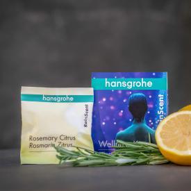 Hansgrohe RainScent Wellness Kit Duschtabs, 5 Stück Rosmarin/Zitrus