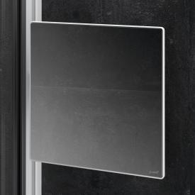 HÜPPE Select+ Mirror silber matt