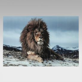 KARE Design Proud Lion Glasbild