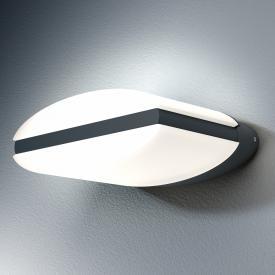 LEDVANCE Endura Style Ellipse LED Wandleuchte