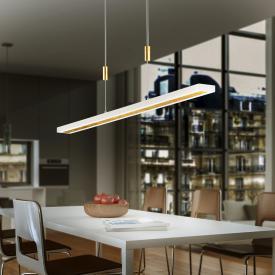 luce elevata gaya LED Pendelleuchte