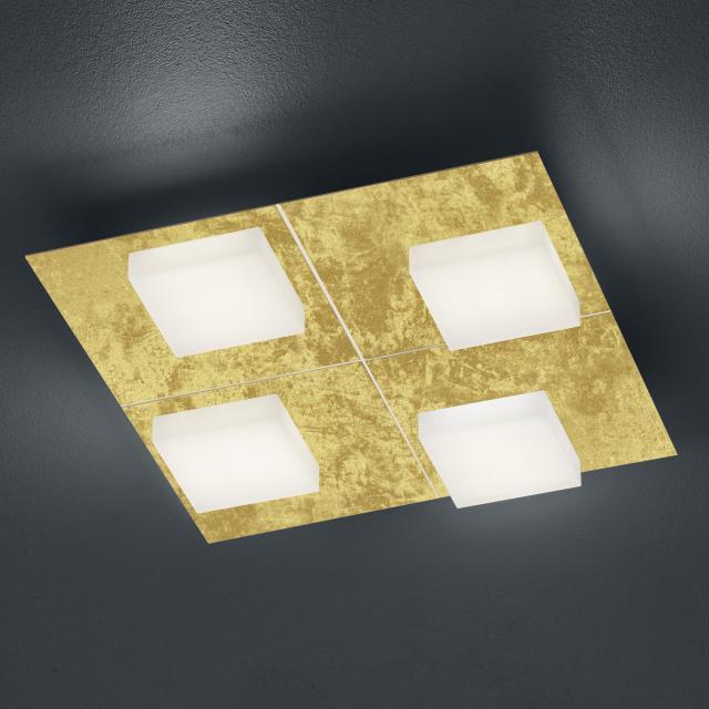 luce elevata cube LED Deckenleuchte / Wandleuchte 4-flammig mit Dimmer, quadratisch