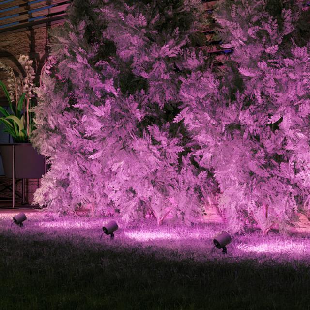 MÜLLER-LICHT tint Flores white+color RGBW LED Spießstrahler mit Dimmer, 3er Set