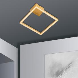 Näve Square LED Deckenleuchte