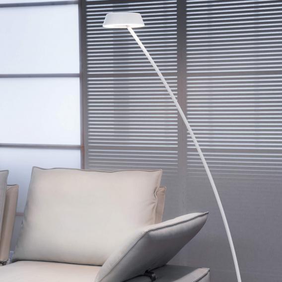 Oligo Plus GLANCE LED Stehleuchte gebogen mit Dimmer