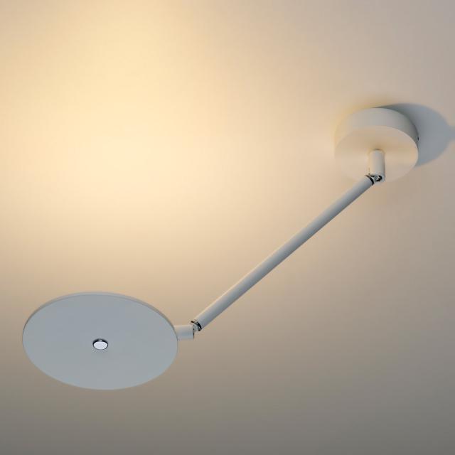 OLIGO Scotty LED Decken-/Wandleuchte
