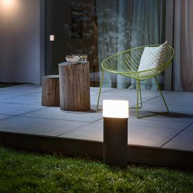 LEDVANCE Endura Style Ellipse LED Pollerleuchte