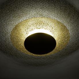 Paul Neuhaus Nevis LED Deckenleuchte mit Dimmer