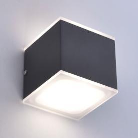 Paul Neuhaus Q-Amin RGBW LED Wandleuchte mit Dimmer