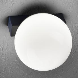 Paul Neuhaus Q-Lino RGBW LED Wandleuchte mit Dimmer