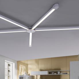 Paul Neuhaus Q-Spider LED Schiene mit Dimmer, gerade
