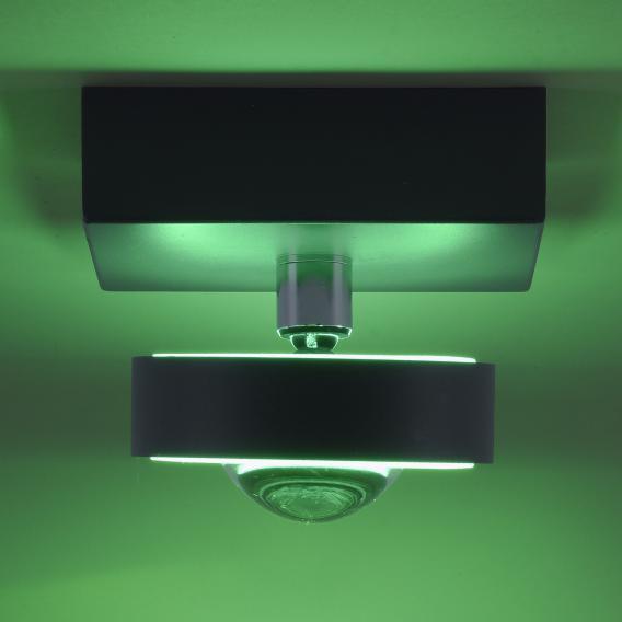 Paul Neuhaus Q-Mia RGBW LED Spot/Deckenleuchte mit Dimmer und CCT