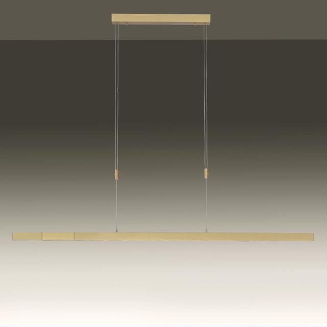 Paul Neuhaus Adriana LED Pendelleuchte mit Dimmer und CCT
