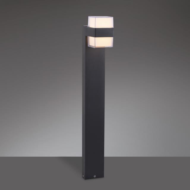 Paul Neuhaus Cara LED Pollerleuchte
