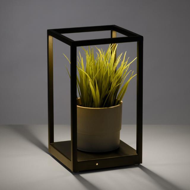 Paul Neuhaus Contura LED Tischleuchte mit Dimmer