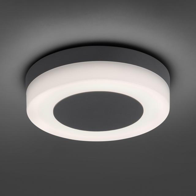 Paul Neuhaus Fabian LED Wand-/Deckenleuchte
