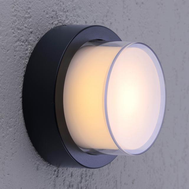 Paul Neuhaus Q-Erik RGBW LED Decken-/Wandleuchte mit Dimmer