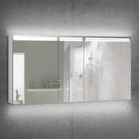 Schneider ARANGALINE Spiegelschrank mit 3 Türen silber eloxiert