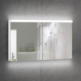 Schneider DAILYLINE Ultimate Spiegelschrank mit LED-Beleuchtung mit 2 Türen Steckdose mittig