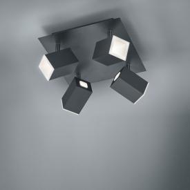 Trio Lagos LED Deckenleuchte / Spot