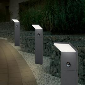 Trio Pearl LED Pollerleuchte mit Bewegungsmelder